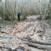 12-03-18 Feucherolles - Bain de boue 1