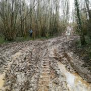 12-03-18 Feucherolles - Bain de boue 2