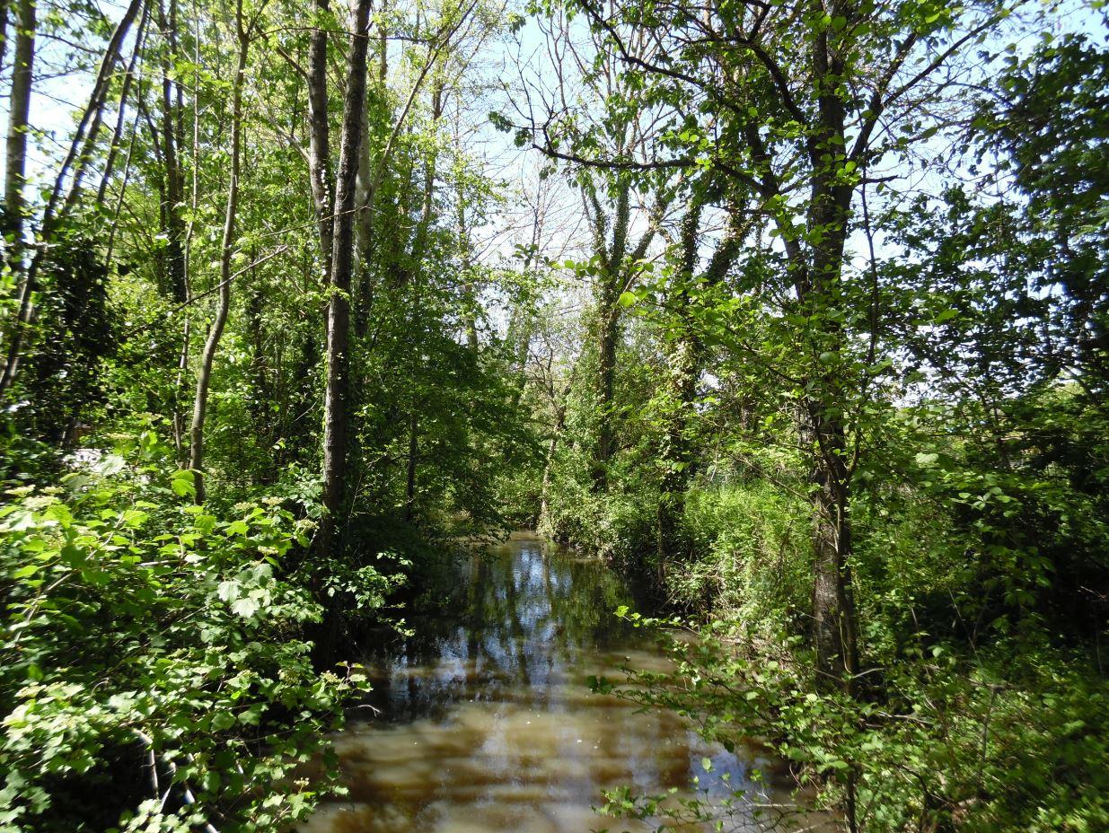 19-05-19 Fontaine Simon (reconnaissance)
