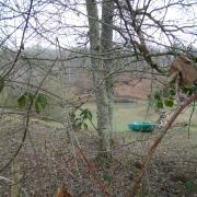 18-02-18 La Madeleine Bouvet 6 - Petit étang