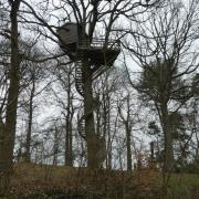 18-03-18 St Rémy L'Honoré 13-Maison dans les arbres