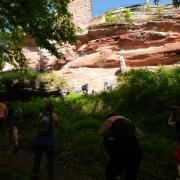 dimanche 06-05 - 2 Entre les châteaux forts et étangs
