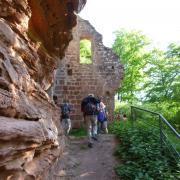 dimanche 06-05 - 5 Entre les châteaux forts et étangs