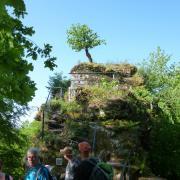 dimanche 06-05 - 6 Entre les châteaux forts et étangs