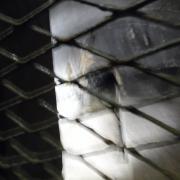 lundi 07-05 - 40 Vestiges de la ligne Maginot