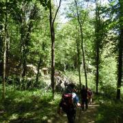 mardi 08-05 - 12 Sentiers à travers plaine et piémont