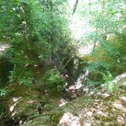 mardi 08-05 - 14 Sentiers à travers plaine et piémont