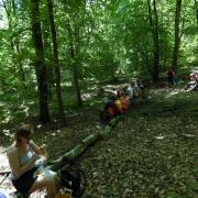 mardi 08-05 - 15 Sentiers à travers plaine et piémont