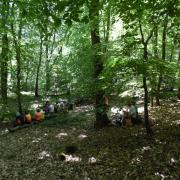 mardi 08-05 - 16 Sentiers à travers plaine et piémont