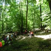 mardi 08-05 - 17 Sentiers à travers plaine et piémont