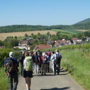 mardi 08-05 - 3.1 Sentiers à travers plaine et piémont