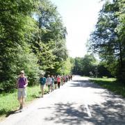 mardi 08-05 - 8 Sentiers à travers plaine et piémont